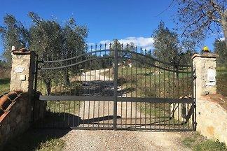 Casa Rinaldi