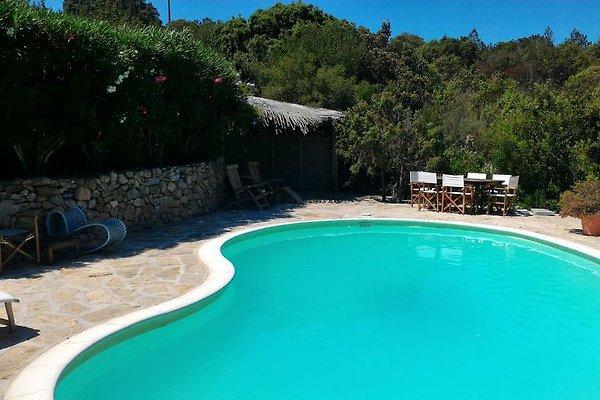 Villa Rosita.San Pantaleo in San Pantaleo - Bild 1