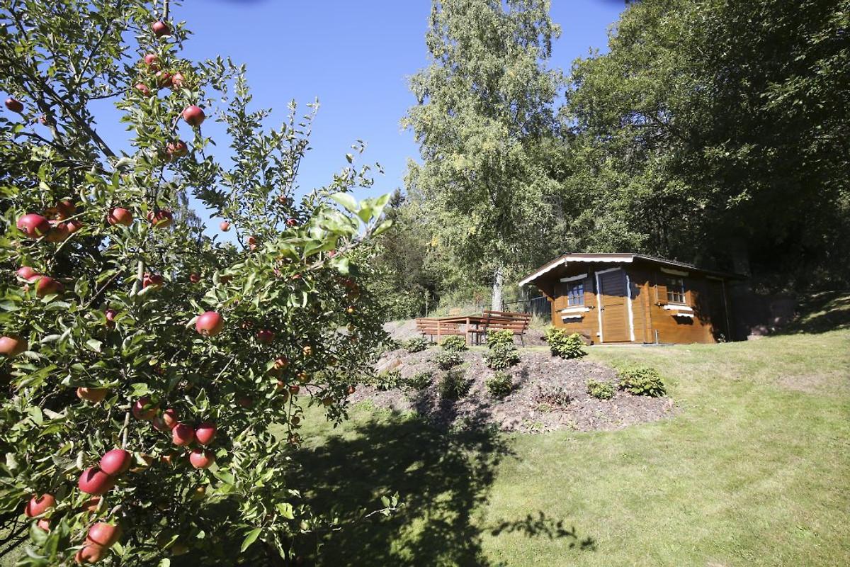 Willys Castle - Ferienwohnung in Bad Laasphe mieten