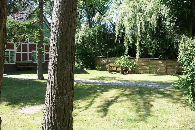 Garten mit altem Baumbestand