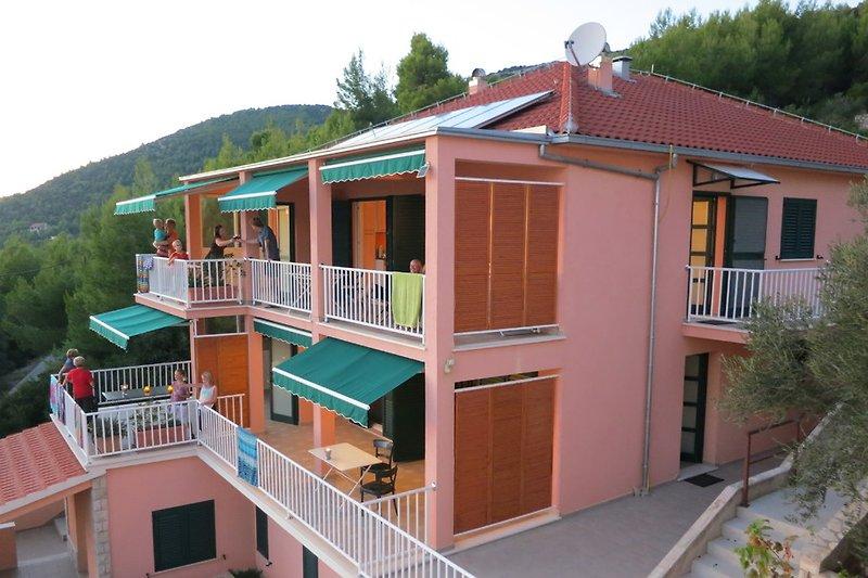 4 Wohnungen befinden sich im Haus SASA