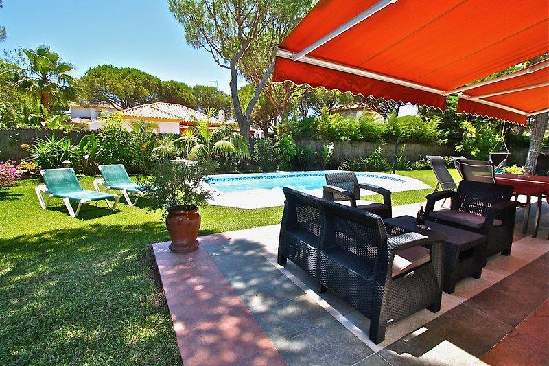 Pool, Terrase, Garten, Sonnenliegen