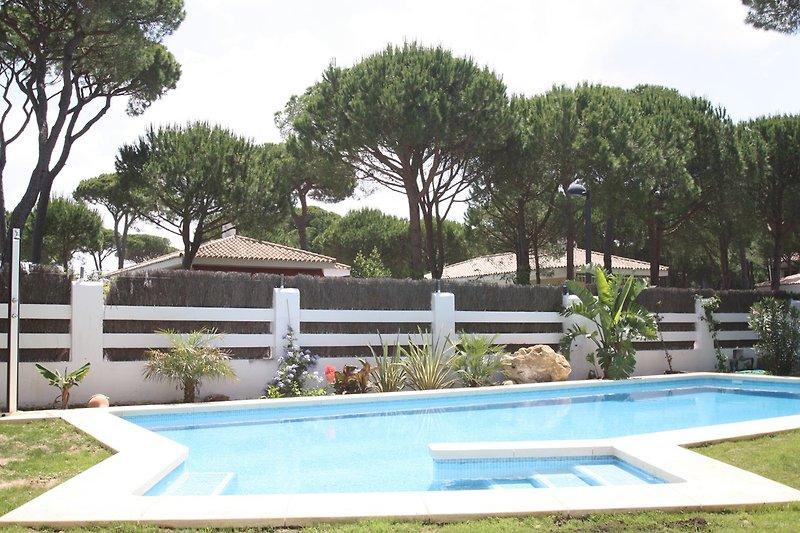 Pool, Salzwasser