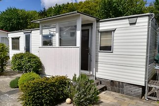 Small, cosy mobile home for the whole family, not far from the extensive North Sea beach and directly connected to a nature reserve worth seeing.