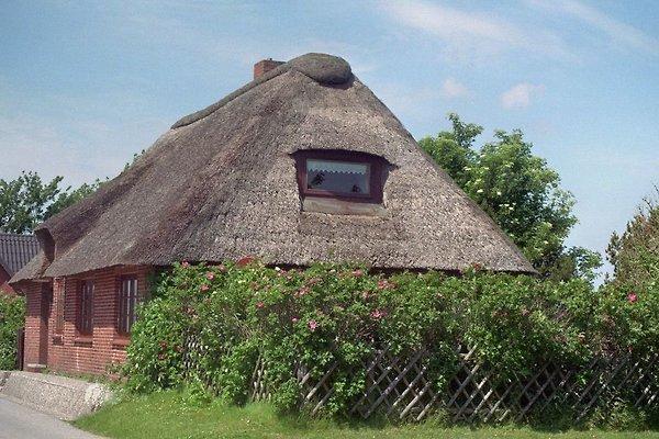 Ferienhaus Moordeich en Nordstrand - imágen 1