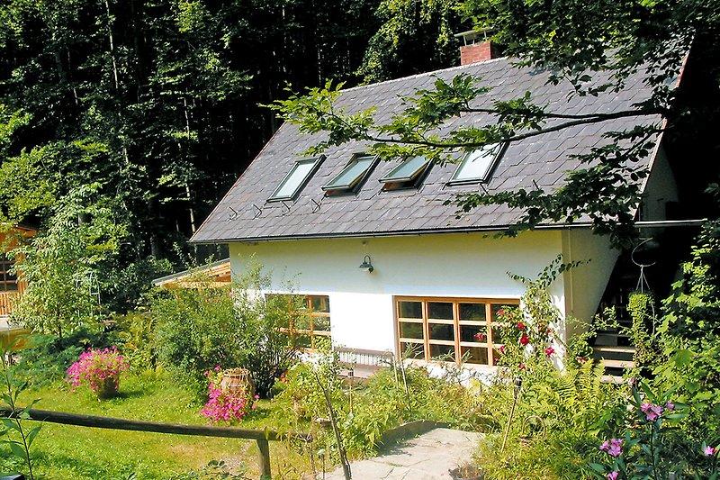 Ferienhaus Zu Brunn im Sommer