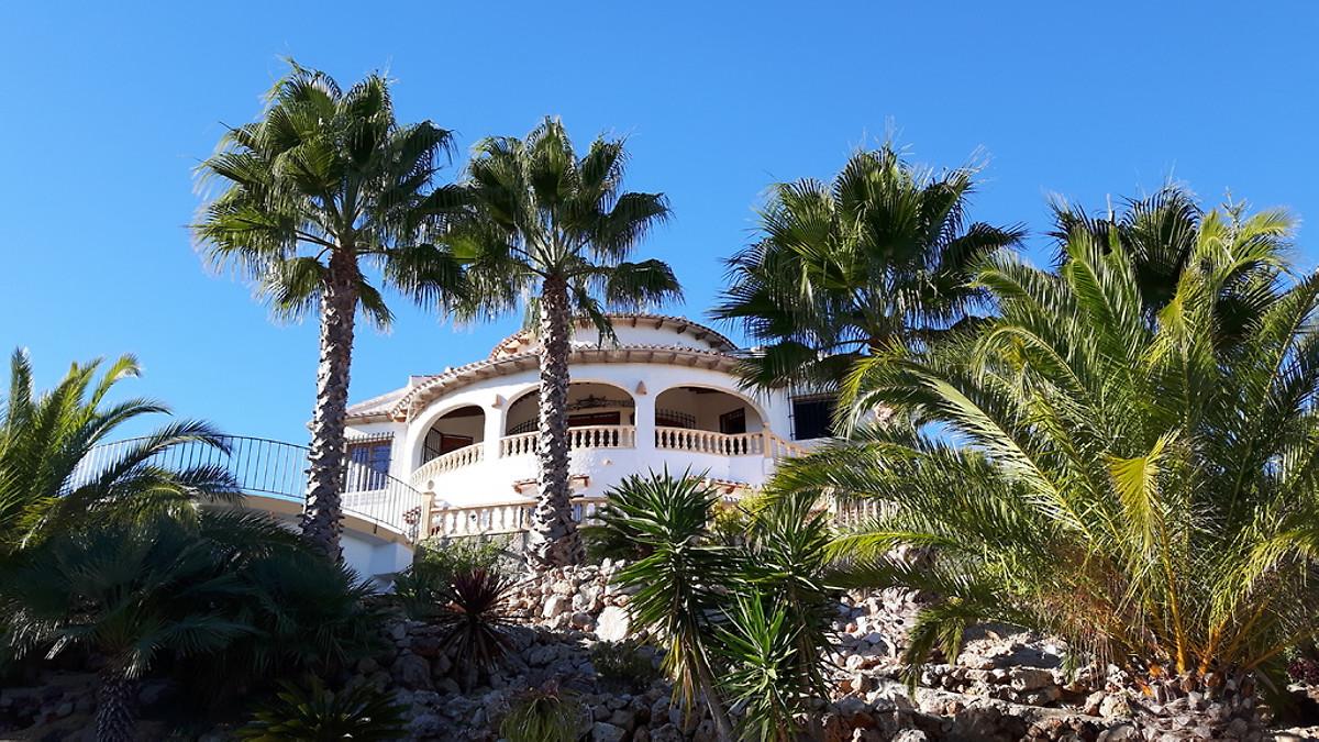 zemljište s palmama na imanju vode koja je razlika između apsolutnih i relativnih metoda datiranja