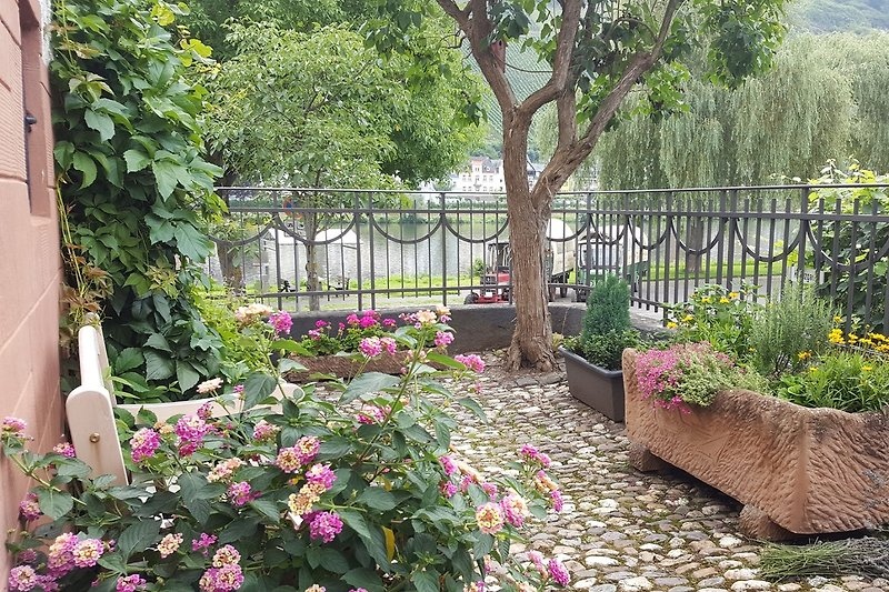 Über den kleinen Garten zu erreichen