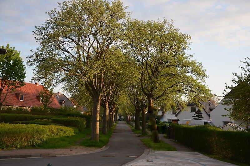 Einfahrt Ringstraße