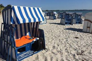 FeWo Bodden, strandnah, 2020 renov.