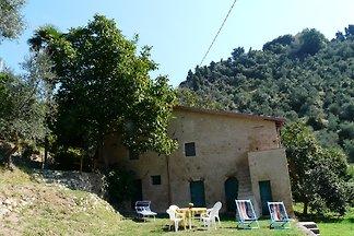 Villino Graceland