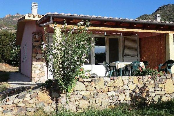 HOUSE in Marina di Tertenia - Bild 1