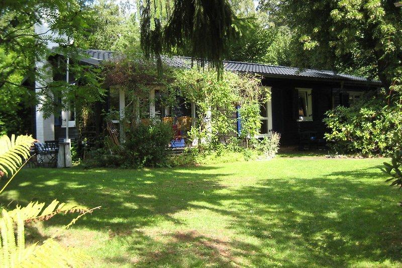 Ferienhäuser Küsterwiesen Haus 4