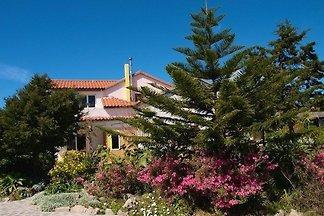 Camellia / Resort Floramar