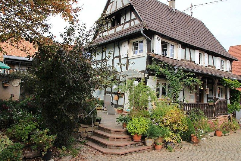 jardin 4 temps in Kutzenhausen - Bild 2