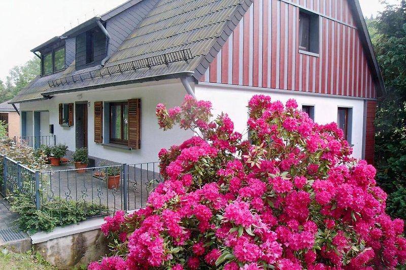Ferienhaus Eifelidyll, Hauseingang