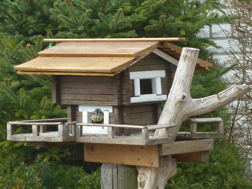 romantische dachgeschossapartement ferienwohnung in sassnitz mieten. Black Bedroom Furniture Sets. Home Design Ideas