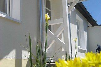 Es werden Ferienwohnungen für 2 bis 6 Personen, 36 qm bis 60 qm gross, im Ostseebad Sellin auf Rügen vermietet.