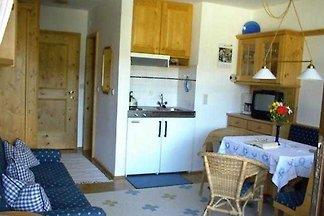 Vakantie-appartement Gezinsvakantie Wildschönau
