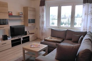 Holiday flat family holiday Oberwiesenthal