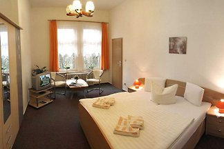 Hotel cultural and sightseeing holiday Schulenberg im Oberharz