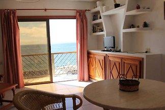 Apartment Mambo 1