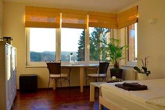 Appartement Vacances avec la famille Burgthann