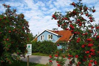 Ferienhaus Storch 3