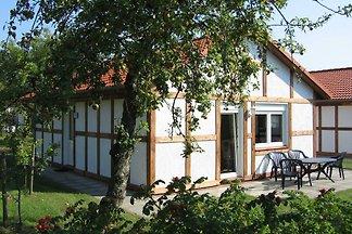 Ferienhaus 116 Kogge 60qm bis 5 Personen mit...