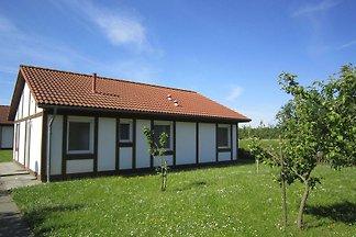 Ferienhaus 325 Kogge 60qm bis 6 Personen mit...