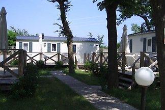 Ferienanlage Paradiso - Mobilehome (2413)