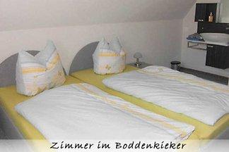 hotel Kultura & zwiedzanie Dreschvitz