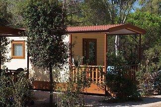 Kuća za odmor Dopust za oporavak Capoliveri