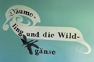 Nordische Märchen - Wildgänse 16