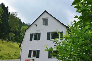 Holiday home relaxing holiday Olsberg