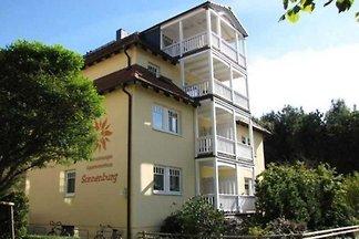 (11) 2- Raum- Appartement