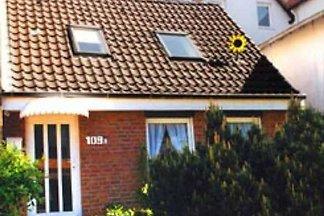 Ostseehaus Dreesen Sonnenblumenhaus Strandstr...