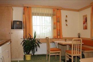 Holiday flat family holiday Ramsau am Dachstein