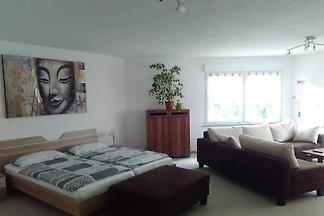 Vakantie-appartement in Vogelsberg