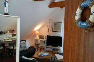 Studio Ole SNR: 5