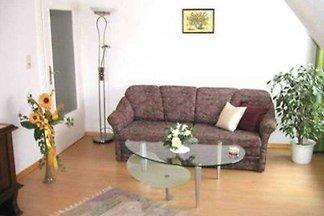 Die Ferienwohnung befindet sich am Ortsrand von Amorbach in einer wunderschön gelegenen Hanglage über der historischen Altstadt.