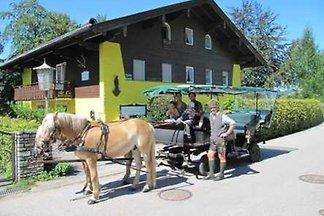 Vakantieappartement Gezinsvakantie St. Wolfgang