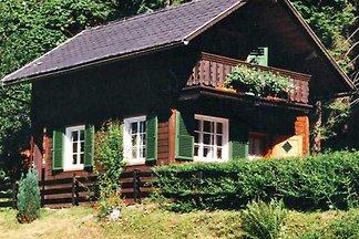 Ferienhaus Walter Pilz 1
