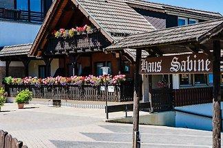 Haus Sabine - Ferienwohnung