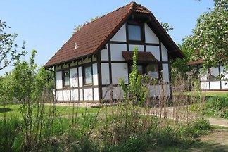 Ferienhaus 169 Deichgraf 65qm bis 6 Personen ...