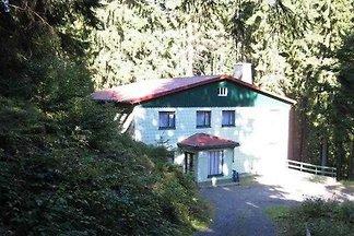 Ferienhaus im Wald bis 19+2 Personen...