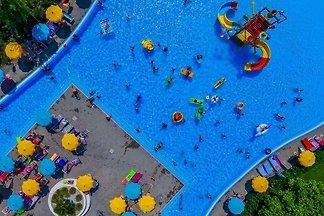 Ferienpark BelVedere - Wohnung Superior...