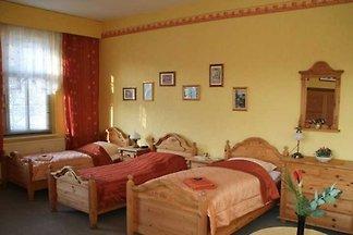 Mehrbettzimmer - gelbes Zimmer