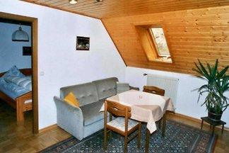Vakantie-appartement Gezinsvakantie Kleines Wiesental