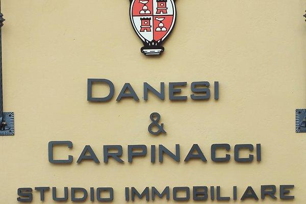 F. Carpinacci